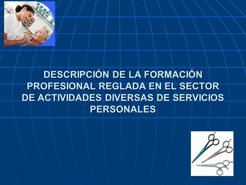 DESCRIPCIÓN DE LA FORMACIÓN PROFESIONAL REGLADA EN EL SECTOR DE ACTIVIDADES DIVERSAS DE SERVICIOS PERSONALES