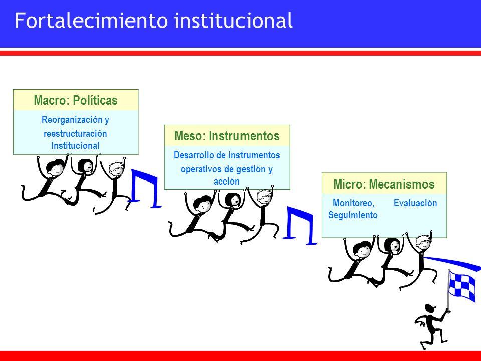 Fortalecimiento institucional Micro: Mecanismos Monitoreo, Seguimiento Evaluación Macro: Políticas Reorganización y reestructuración Institucional Mes