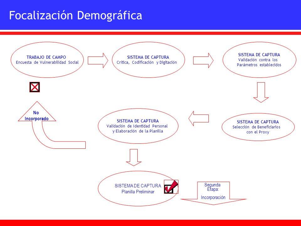 SISTEMA DE CAPTURA Planilla Preliminar Focalización Demográfica TRABAJO DE CAMPO Encuesta de Vulnerabilidad Social SISTEMA DE CAPTURA Crítica, Codific