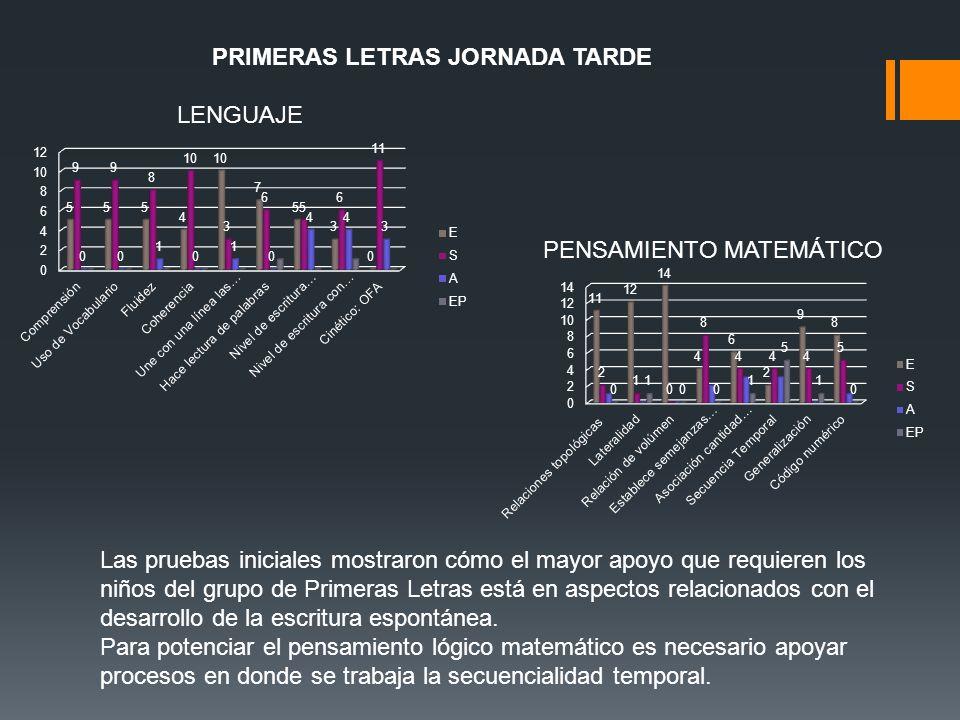Las pruebas iniciales mostraron cómo el mayor apoyo que requieren los niños del grupo de Primeras Letras está en aspectos relacionados con el desarrol