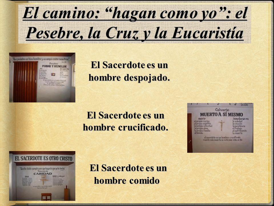 El camino: hagan como yo: el Pesebre, la Cruz y la Eucaristía E EE El Sacerdote es un hombre despojado.