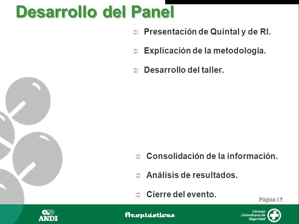Página 15 Presentación de Quintal y de RI. Explicación de la metodología. Desarrollo del taller. Desarrollo del Panel Consolidación de la información.