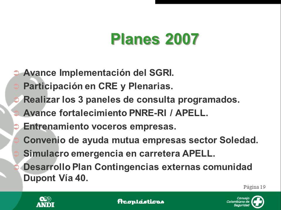 Página 19 Planes 2007 Avance Implementación del SGRI. Participación en CRE y Plenarias. Realizar los 3 paneles de consulta programados. Avance fortale