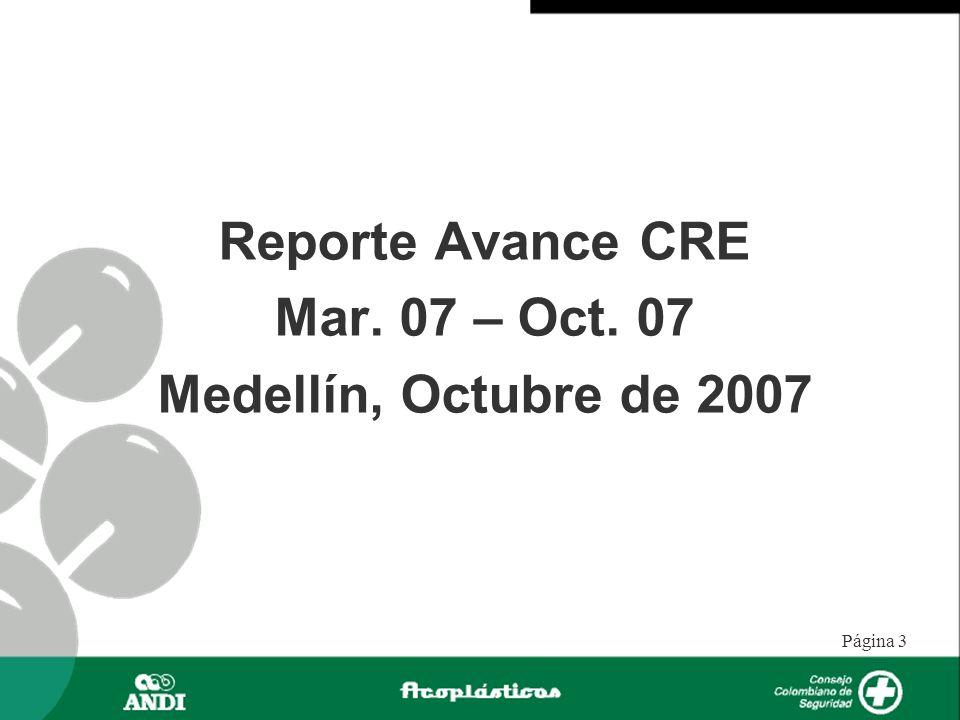 Página 3 Reporte Avance CRE Mar. 07 – Oct. 07 Medellín, Octubre de 2007