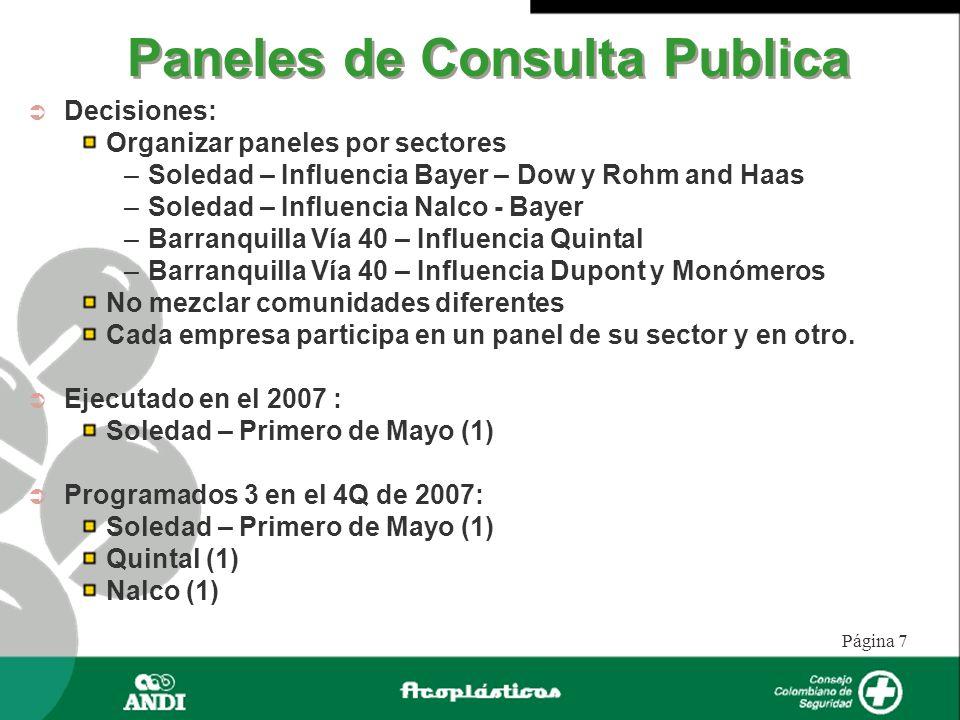 Página 7 Paneles de Consulta Publica Decisiones: Organizar paneles por sectores –Soledad – Influencia Bayer – Dow y Rohm and Haas –Soledad – Influenci