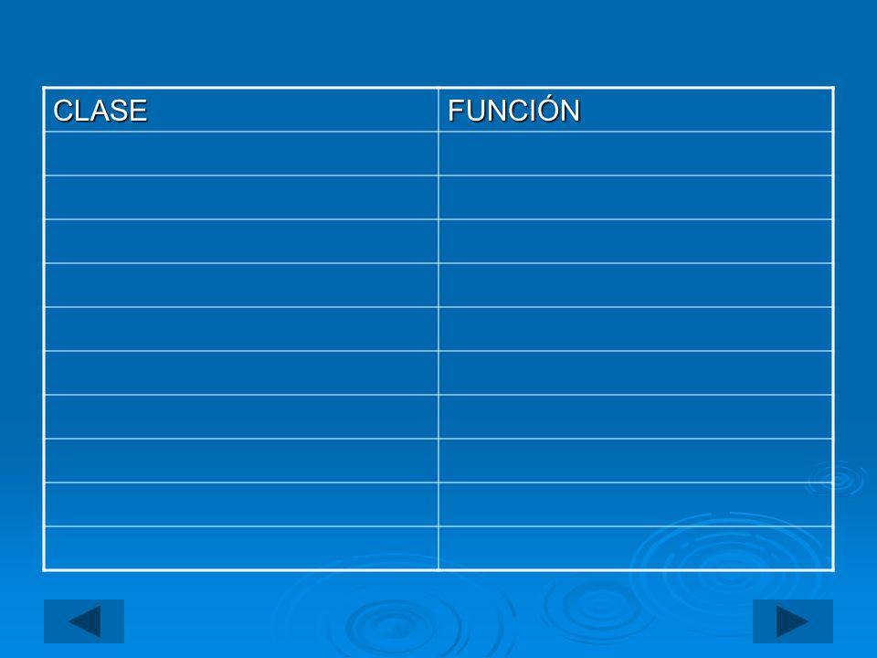 Hay otros verbos que sólo tienen un participio irregular, como los que aparecen en la siguiente tabla.