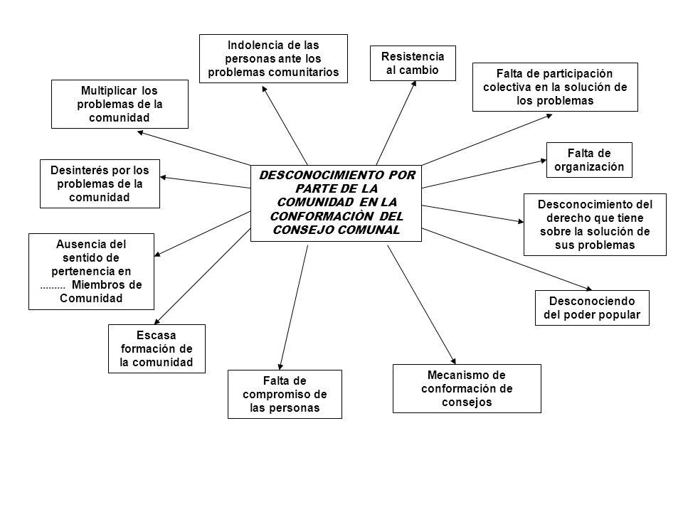DESCONOCIMIENTO POR PARTE DE LA COMUNIDAD EN LA CONFORMACIÒN DEL CONSEJO COMUNAL Multiplicar los problemas de la comunidad Indolencia de las personas