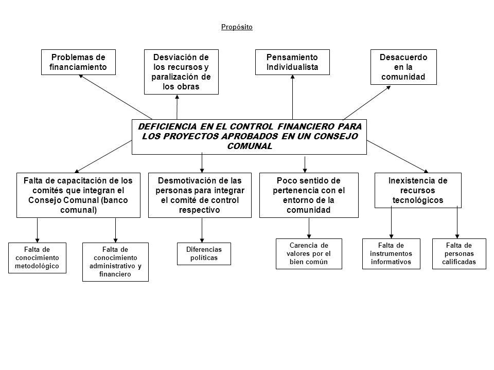 DEFICIENCIA EN EL CONTROL FINANCIERO PARA LOS PROYECTOS APROBADOS EN UN CONSEJO COMUNAL Problemas de financiamiento Desviación de los recursos y paral