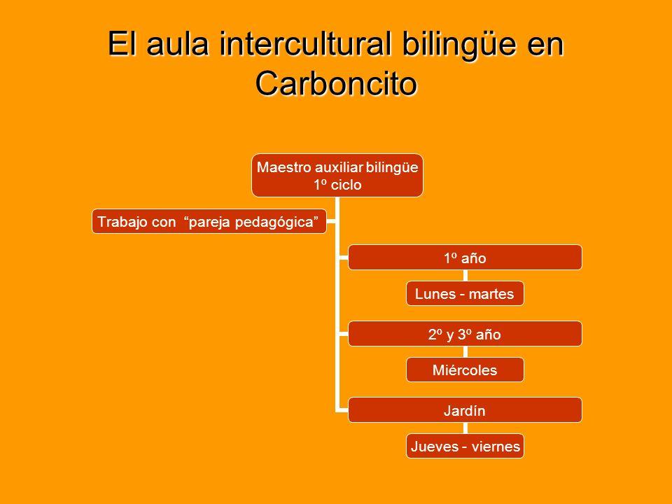 El aula intercultural bilingüe en Carboncito Maestro auxiliar bilingüe 1º ciclo 1º año Lunes - martes 2º y 3º año Miércoles Jardín Jueves - viernes Trabajo con pareja pedagógica