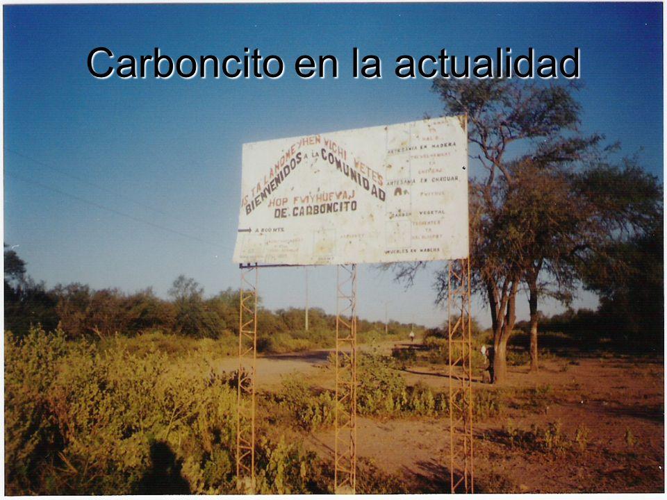 Carboncito en la actualidad