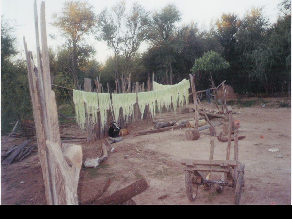 Escuela Nº 4266 Río Bermejo.