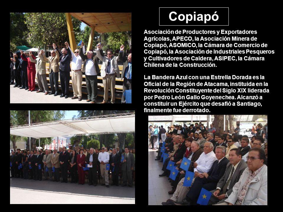 Asociación de Productores y Exportadores Agrícolas, APECO, la Asociación Minera de Copiapó, ASOMICO, la Cámara de Comercio de Copiapó, la Asociación de Industriales Pesqueros y Cultivadores de Caldera, ASIPEC, la Cámara Chilena de la Construcción.