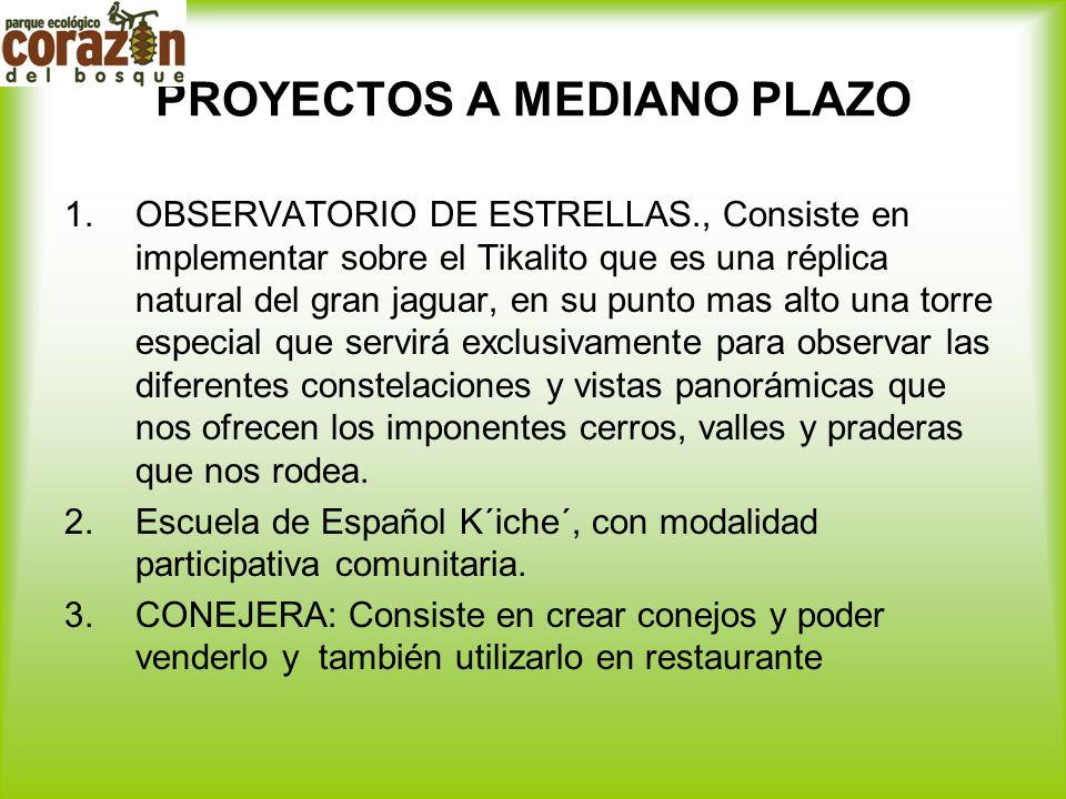 PROYECTOS A MEDIANO PLAZO 1.OBSERVATORIO DE ESTRELLAS., Consiste en implementar sobre el Tikalito que es una réplica natural del gran jaguar, en su pu