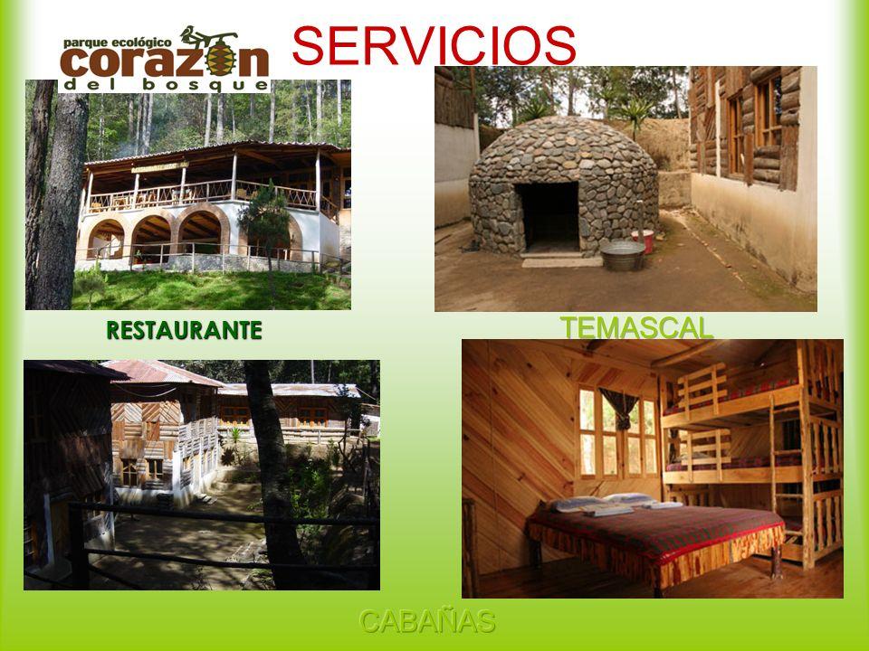 SERVICIOS RESTAURANTE