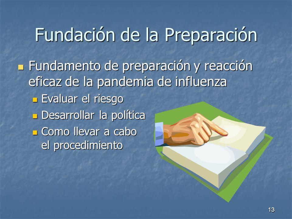 13 Fundación de la Preparación Fundamento de preparación y reacción eficaz de la pandemia de influenza Fundamento de preparación y reacción eficaz de