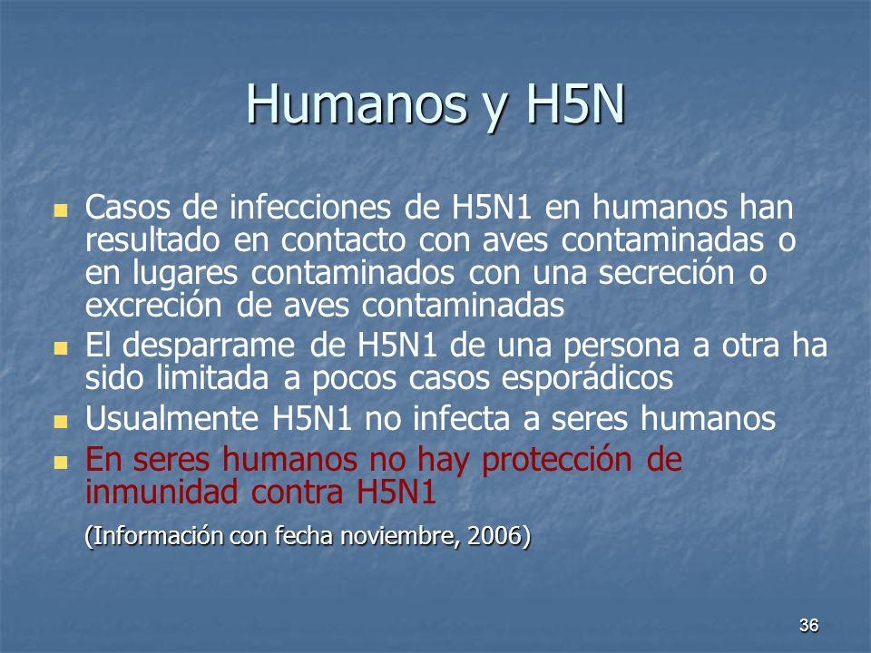 36 Humanos y H5N Casos de infecciones de H5N1 en humanos han resultado en contacto con aves contaminadas o en lugares contaminados con una secreción o