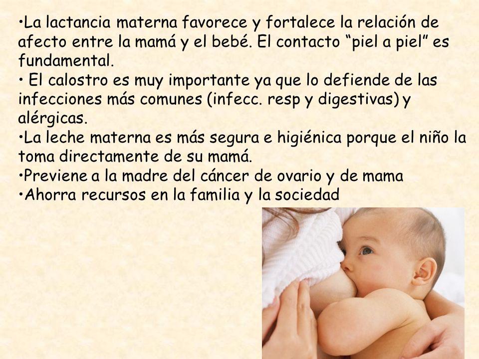 La lactancia materna favorece y fortalece la relación de afecto entre la mamá y el bebé. El contacto piel a piel es fundamental. El calostro es muy im