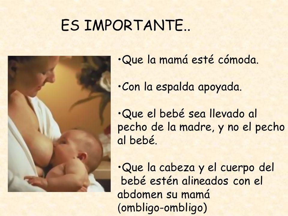 Que la mamá esté cómoda. Con la espalda apoyada. Que el bebé sea llevado al pecho de la madre, y no el pecho al bebé. Que la cabeza y el cuerpo del be