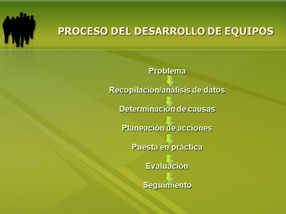 Problema Recopilación/análisis de datos Determinación de causas Planeación de acciones Puesta en práctica EvaluaciónSeguimiento PROCESO DEL DESARROLLO