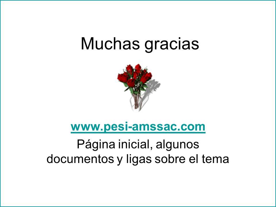 Muchas gracias www.pesi-amssac.com Página inicial, algunos documentos y ligas sobre el tema