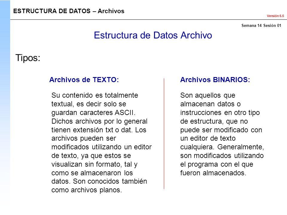 Versión 6.5 Estructura de Datos Archivo Su contenido es totalmente textual, es decir solo se guardan caracteres ASCII. Dichos archivos por lo general
