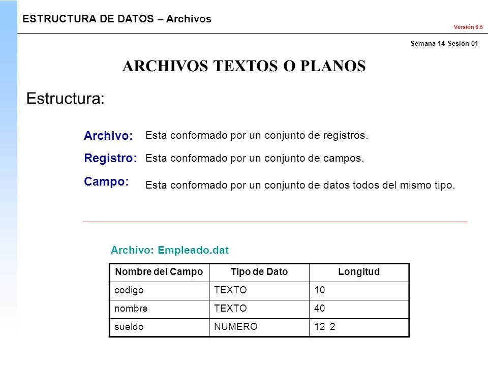 Versión 6.5 ARCHIVOS TEXTOS O PLANOS ESTRUCTURA DE DATOS – Archivos Estructura: Archivo: Registro: Campo: Esta conformado por un conjunto de registros