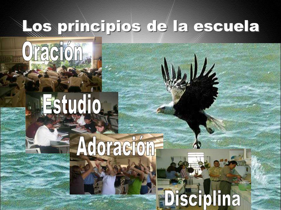 Los principios de la escuela