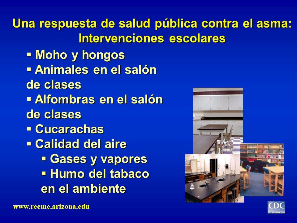 Una respuesta de salud pública contra el asma: Intervenciones escolares Moho y hongos Moho y hongos Animales en el salón de clases Animales en el saló