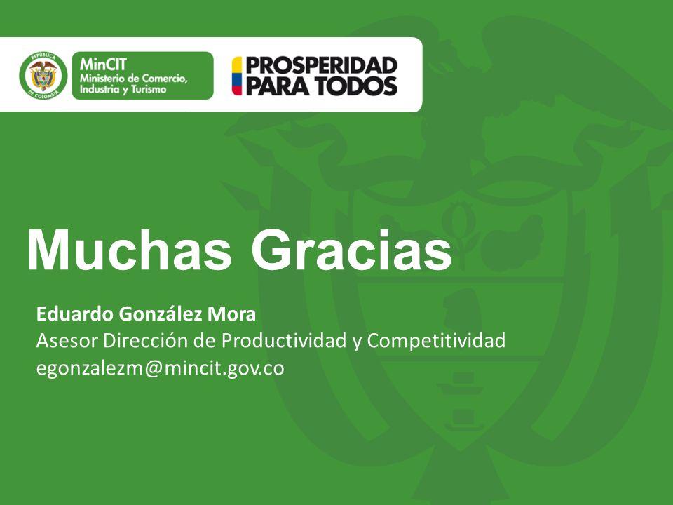 Muchas Gracias Eduardo González Mora Asesor Dirección de Productividad y Competitividad egonzalezm@mincit.gov.co