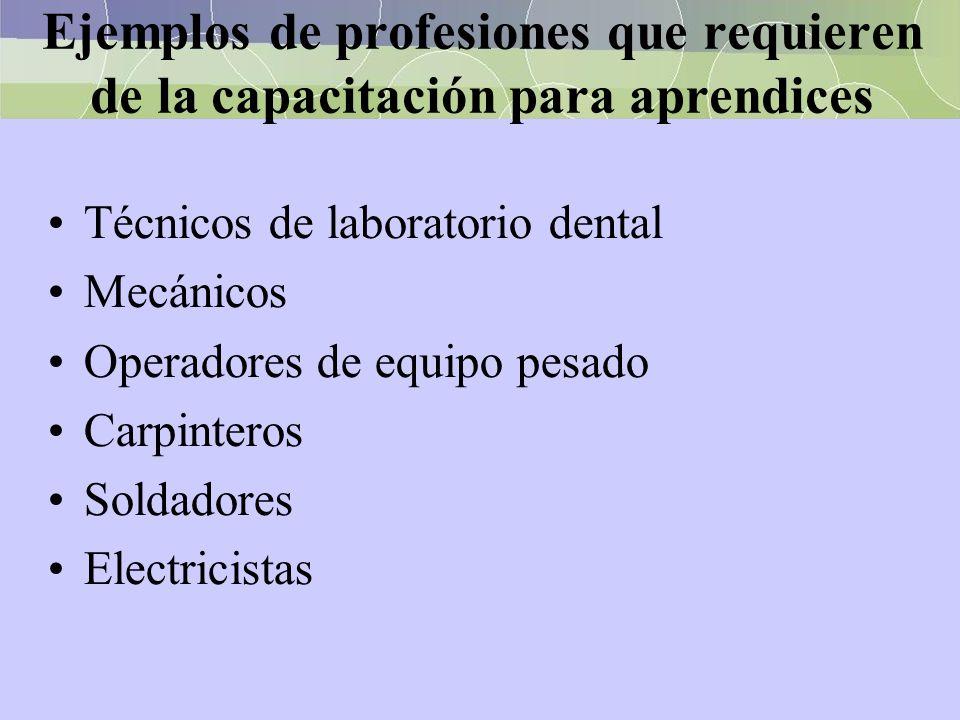 Ejemplos de profesiones que requieren de la capacitación para aprendices Técnicos de laboratorio dental Mecánicos Operadores de equipo pesado Carpinte
