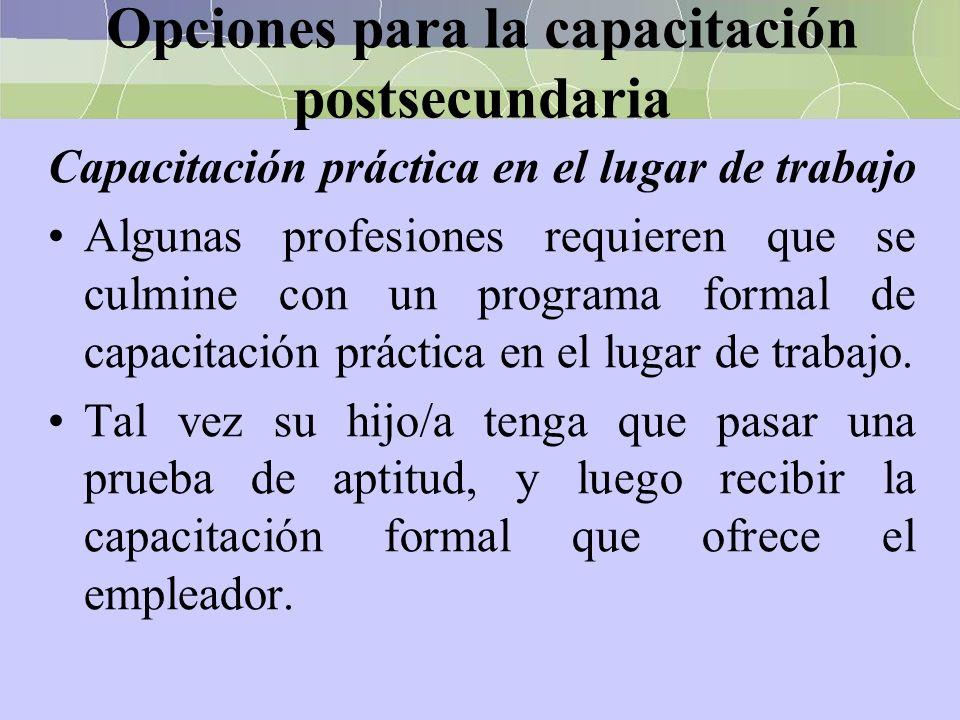 Opciones para la capacitación postsecundaria Capacitación práctica en el lugar de trabajo Algunas profesiones requieren que se culmine con un programa