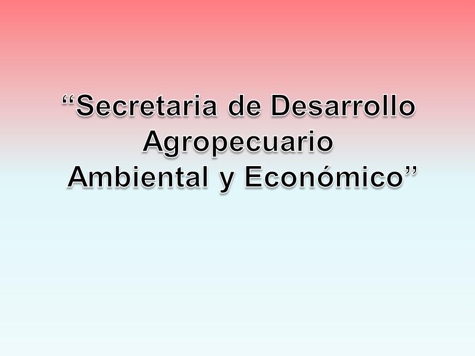 SECTOR: FORTALECIMIENTO INSTITUCIONAL PROGRAMA: Sistema de Planeación Municipal ACTIVIDADES: Formulación del plan de desarrollo periodo 2012-2015 del