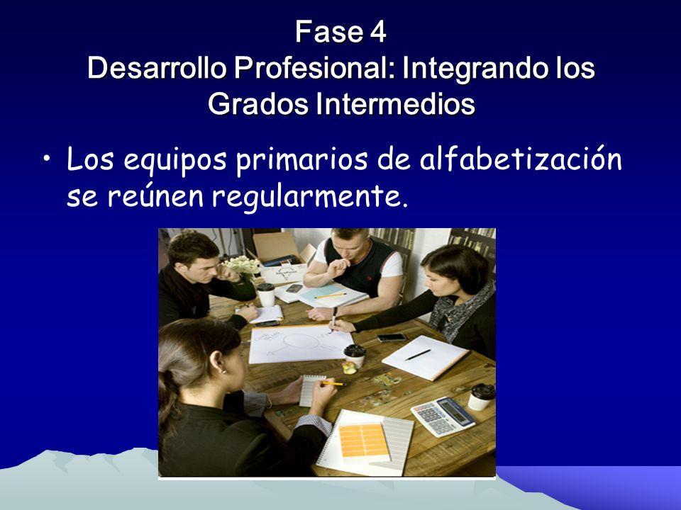 Fase 3 Cursos Intensivos Para los Maestros en Servicio para Formación de Primeros Equipos Las Coordinadoras de alfabetización coleccionan datos y anal