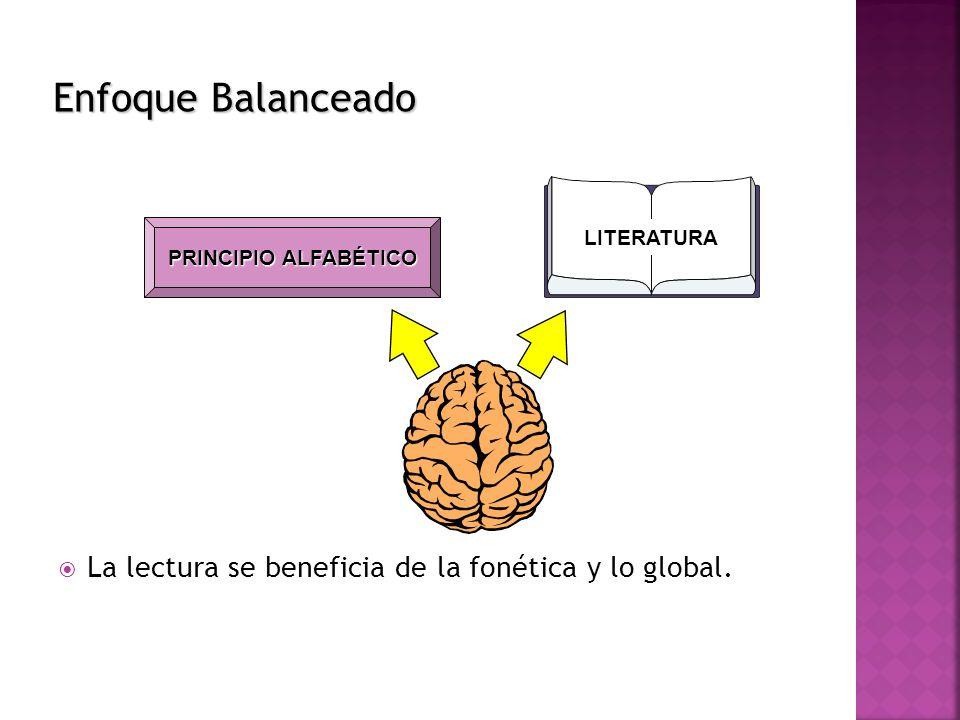 La lectura se beneficia de la fonética y lo global. LITERATURA PRINCIPIO ALFABÉTICO