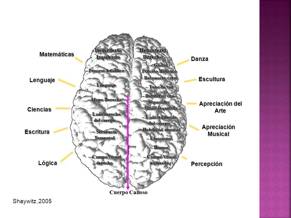 Hemisferio Izquierdo Hemisferio Derecho Cuerpo Calloso – Proceso Analítico – Lenguaje – Mano Derecha – Lado derecho del cuerpo – Secuencia Temporal –