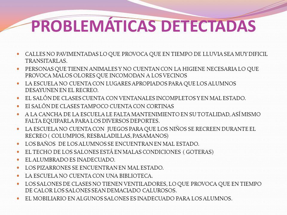 PROBLEMÁTICAS DETECTADAS CALLES NO PAVIMENTADAS LO QUE PROVOCA QUE EN TIEMPO DE LLUVIA SEA MUY DIFICIL TRANSITARLAS. PERSONAS QUE TIENEN ANIMALES Y NO