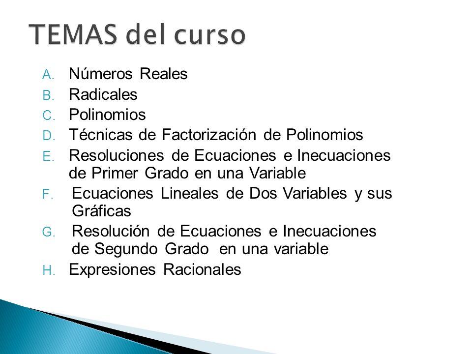 A. Números Reales B. Radicales C. Polinomios D. Técnicas de Factorización de Polinomios E. Resoluciones de Ecuaciones e Inecuaciones de Primer Grado e