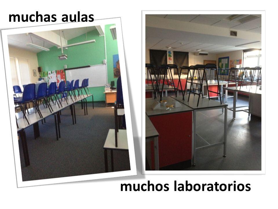 muchas aulas muchos laboratorios