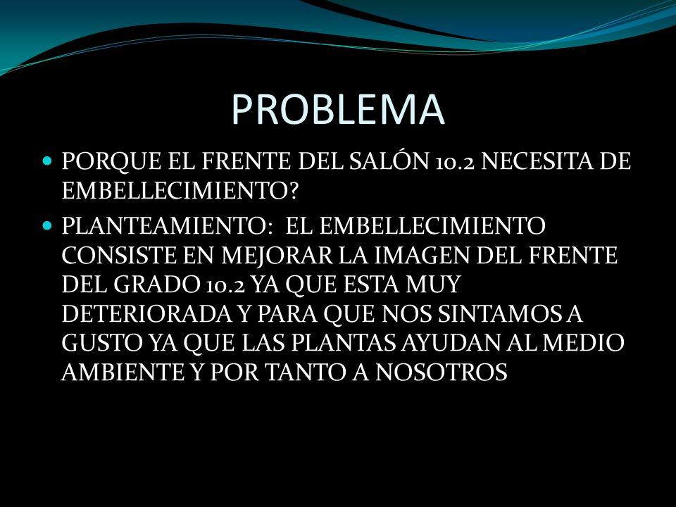 PROBLEMA PORQUE EL FRENTE DEL SALÓN 10.2 NECESITA DE EMBELLECIMIENTO.