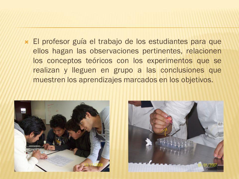 El profesor guía el trabajo de los estudiantes para que ellos hagan las observaciones pertinentes, relacionen los conceptos teóricos con los experimen