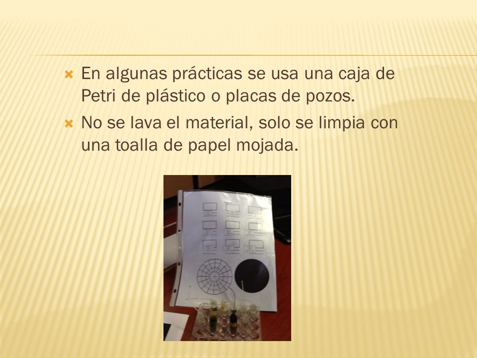 En algunas prácticas se usa una caja de Petri de plástico o placas de pozos. No se lava el material, solo se limpia con una toalla de papel mojada.