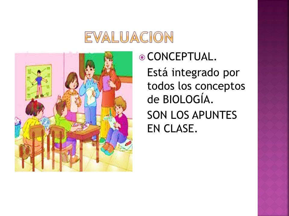 CONCEPTUAL. Está integrado por todos los conceptos de BIOLOGÍA. SON LOS APUNTES EN CLASE.