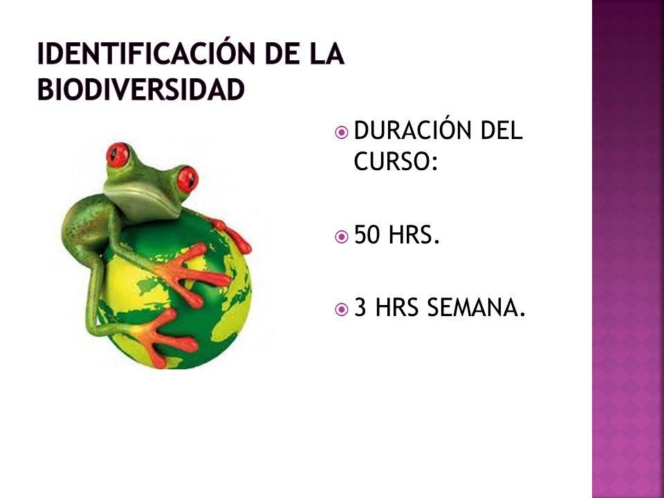 DURACIÓN DEL CURSO: 50 HRS. 3 HRS SEMANA.