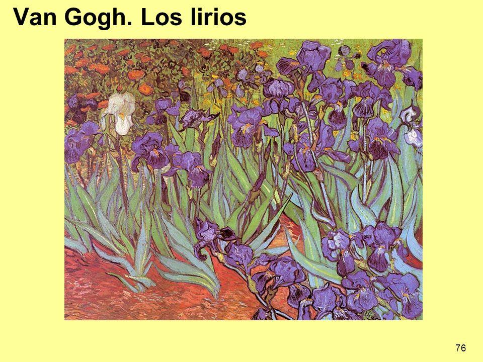 76 Van Gogh. Los lirios
