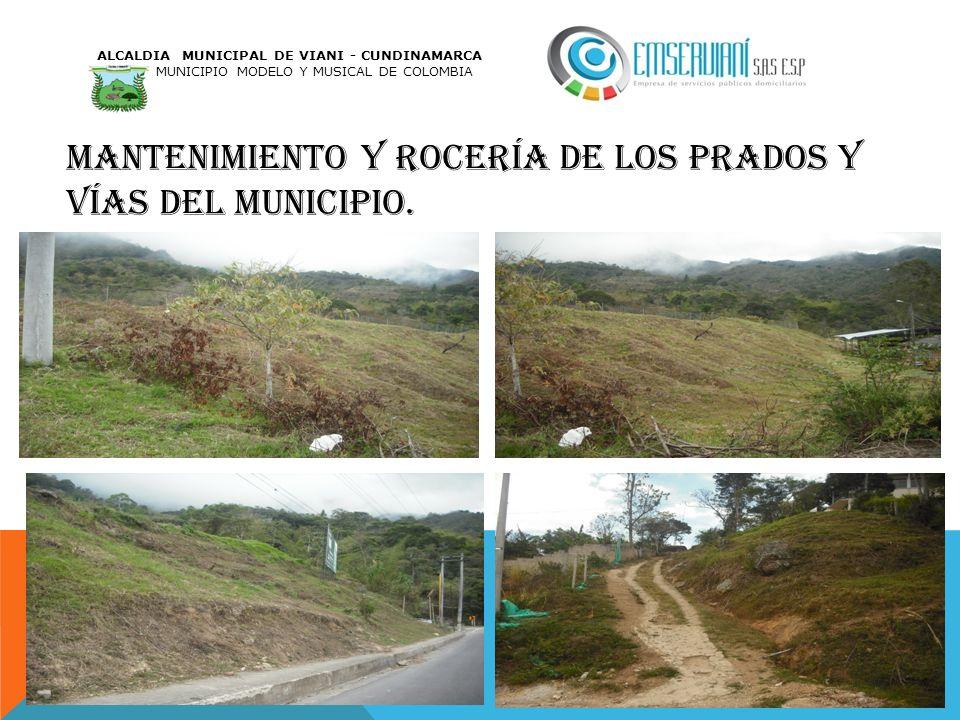 MANTENIMIENTO Y ROCERÍA DE LOS PRADOS Y VÍAS DEL MUNICIPIO. ALCALDIA MUNICIPAL DE VIANI - CUNDINAMARCA MUNICIPIO MODELO Y MUSICAL DE COLOMBIA