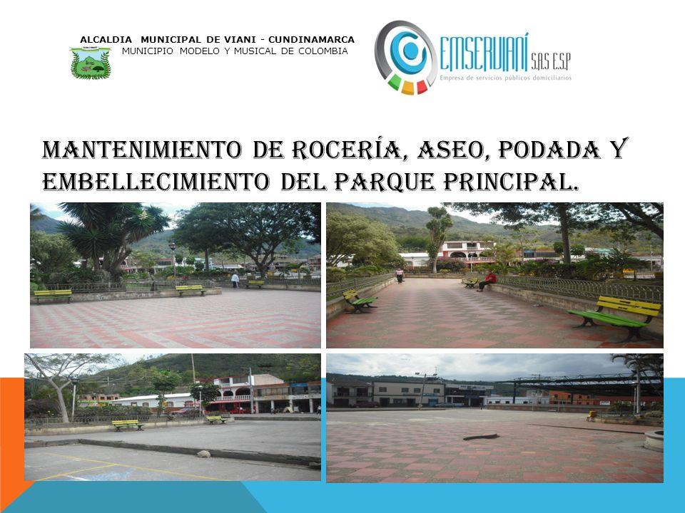 MANTENIMIENTO DE ROCERÍA, ASEO, PODADA Y EMBELLECIMIENTO DEL PARQUE PRINCIPAL. ALCALDIA MUNICIPAL DE VIANI - CUNDINAMARCA MUNICIPIO MODELO Y MUSICAL D