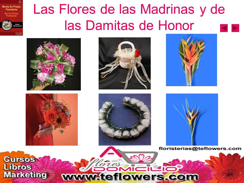 Flores de los Demás Invitados Principales Gallardetes Padrinos Gallardetes Padres Gallardetes Abuelos Gallardetes Pajecitos Pétalos de rosa Sombreros Madres Sombreros Abuelas Bouquets Madres Bouquets Abuelas
