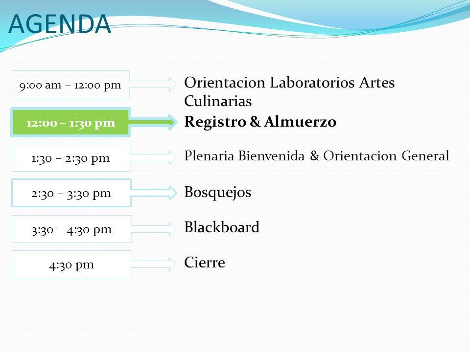 AGENDA Registro & Almuerzo 12:00 – 1:30 pm Cierre 4:30 pm Bosquejos 1:30 – 2:30 pm Plenaria Bienvenida & Orientacion General 2:30 – 3:30 pm Blackboard 3:30 – 4:30 pm Orientacion Laboratorios Artes Culinarias 9:00 am – 12:00 pm