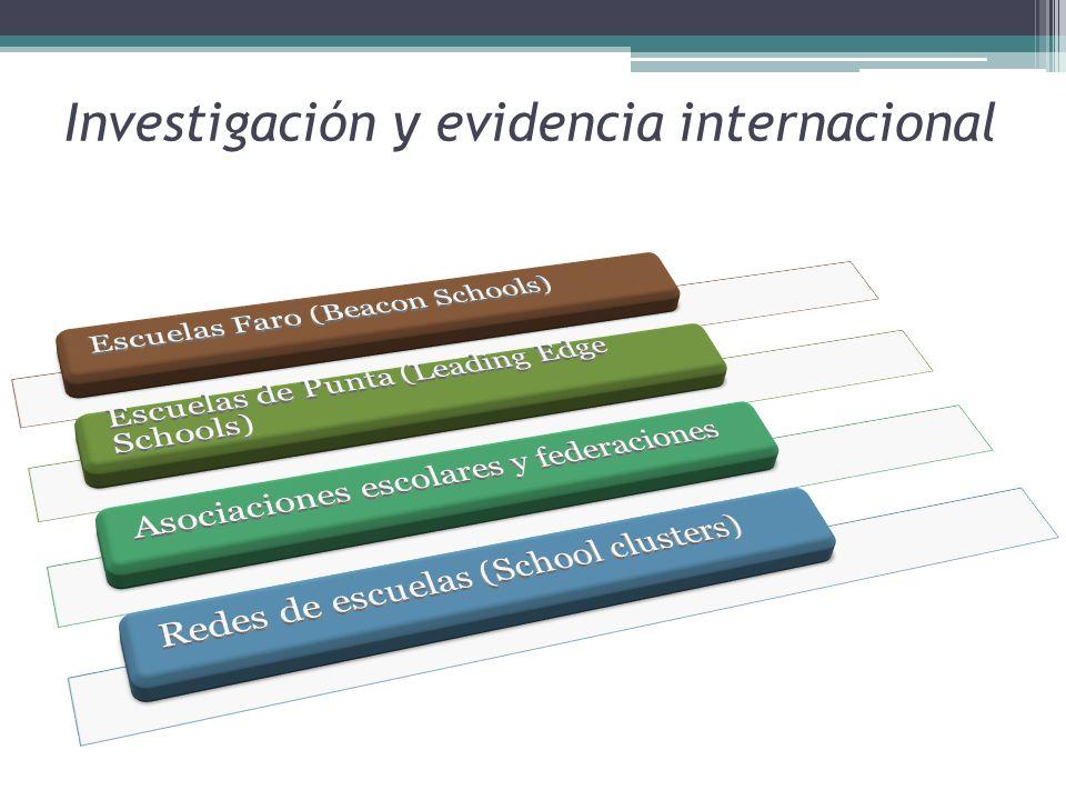 Investigación y evidencia internacional