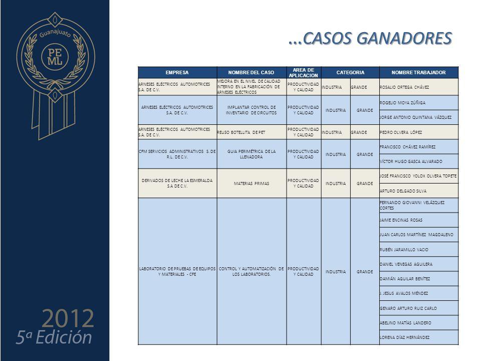 EMPRESANOMBRE DEL CASO AREA DE APLICACION CATEGORIANOMBRE TRABAJADOR ARNESES ELÉCTRICOS AUTOMOTRICES S.A.